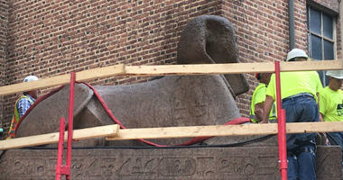 The largest Sphinx in the Western Hemisphere has a new home tonight. It's still at the Penn Museum in Philadelphia.