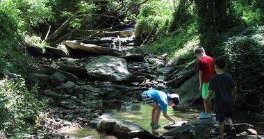 Riverbend Environmental Education Center