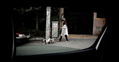 An Iranian woman walks her dogs in Tehran's wealthy Elahiyeh district in 2013.