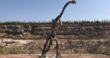 In this Sept. 12, 2018, photo, a dinosaur model stands near the site of a future dinosaur museum in Yanji, China.