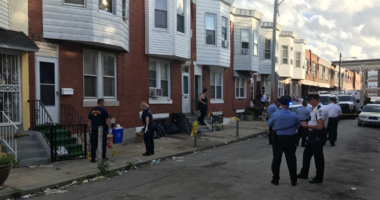 A dog attack involving five pit bulls in a Port Richmond home has left one toddler dead.