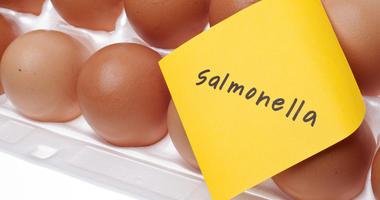 Egg Recall / Salmonella Outbreak