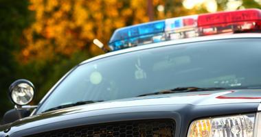 Police Light Generic