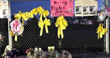 There are posters, yellow ribbons, balloons and candles at the fence by a baseball diamond at the park where Dulce Maria Alavez was last seen.