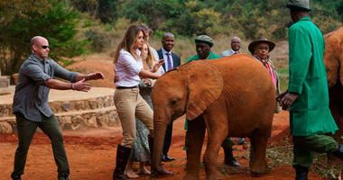 Melania Trump Baby Elephant