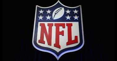 The NFL shield logo