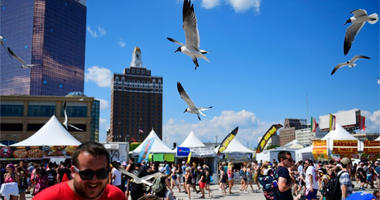 Seagulls on the beach at Warped Tour
