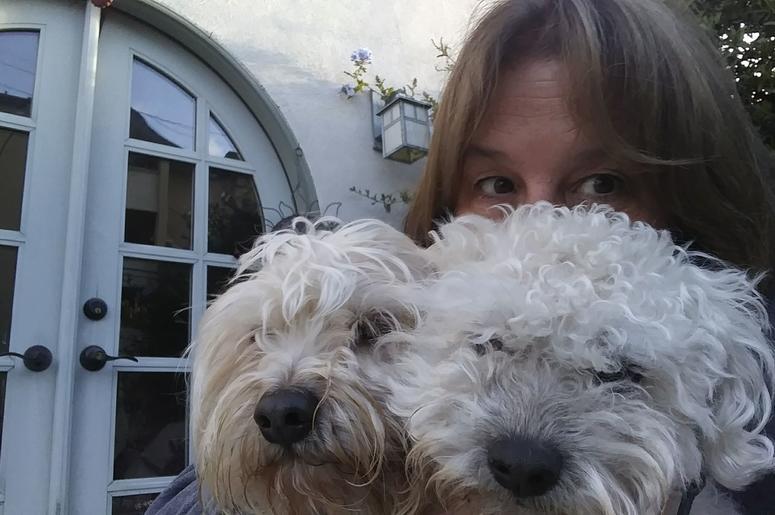 Kelly's Dog Blog — 4-Legged Family Members   KyXy 96 5