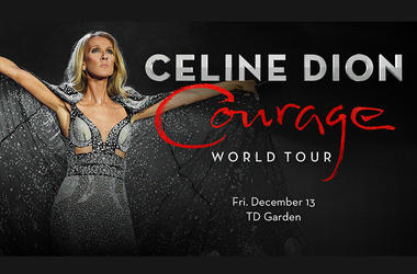 Celine Dion Courage Tour