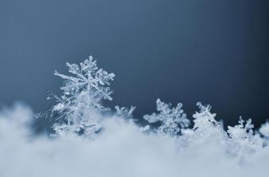 Snowflake (Photo credit: Montypeter/Dreamstime)