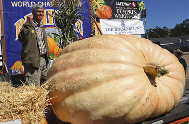 Steve Daletas of Pleasant Hill, Ore., celebrates his first place win in the 45th annual Safeway World Championship Pumpkin Weigh-Off on Monday, Oct. 8, 2018, in Half Moon Bay, Calif. A commercial pilot from Oregon raised a giant pumpkin weighing 2,170 pou