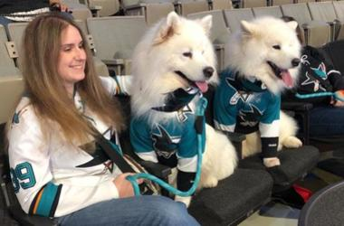 Paws And Pucks at SAP Center San Jose (Photo credit: Mike Colgan/KCBS Radio)