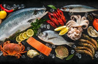 Various Fish and Seafood (Photo credit: ©Alexander Raths)