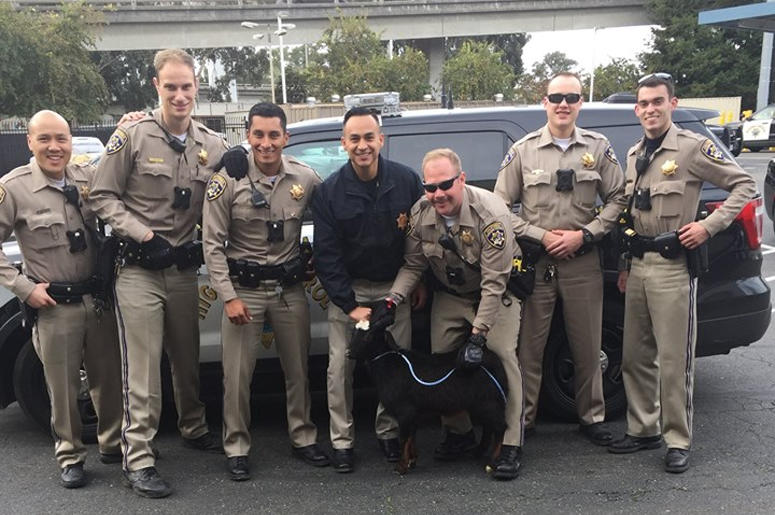 California Highway Patrol and Goat (Photo credit: California Highway Patrol - Oakland)