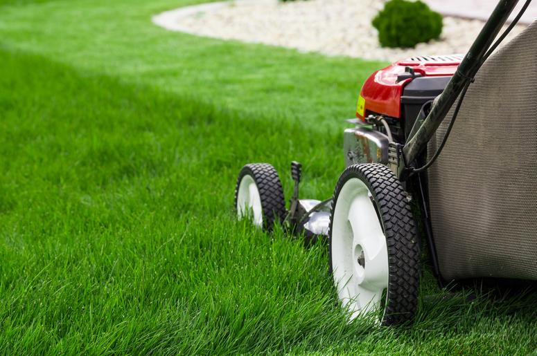 Lawn mower. Cutting, gardener (Photo credit: Mariusz Blach)
