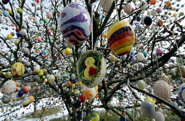 Easter eggs hang in a German apple tree