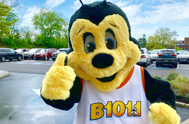Philly's B101 Buzzbee