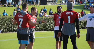 Panthers QBs On Display