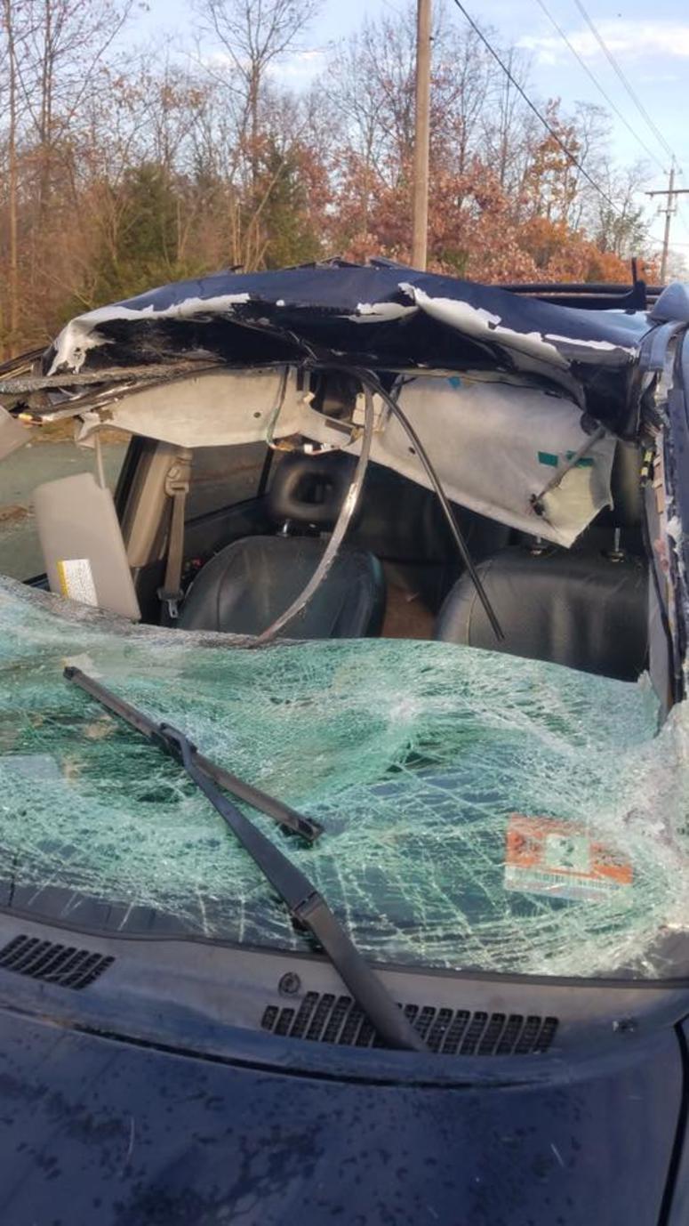 Howell Township Deer Crash