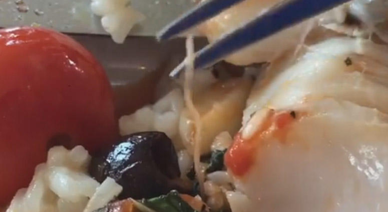 Jersey Shore Restaurant Worm