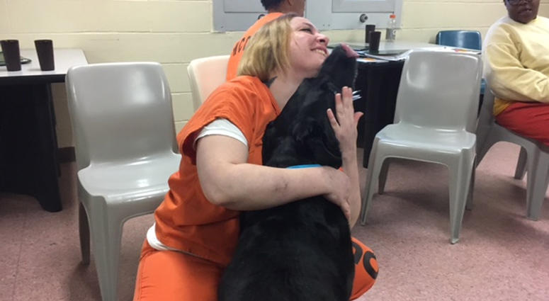 Westchester County Women Inmates And Dogs