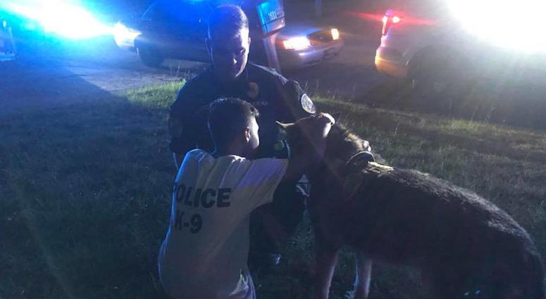 Cops Pray With Boy