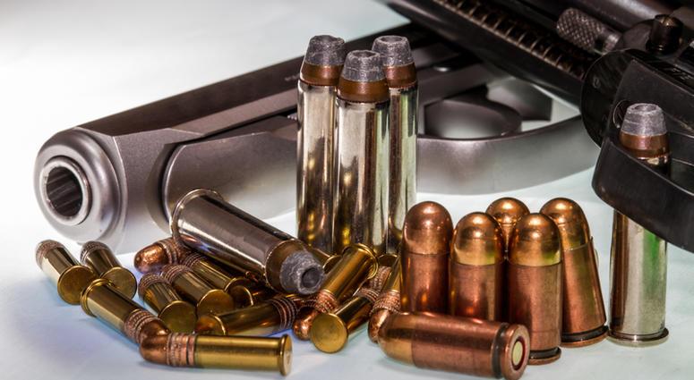 Guns file image