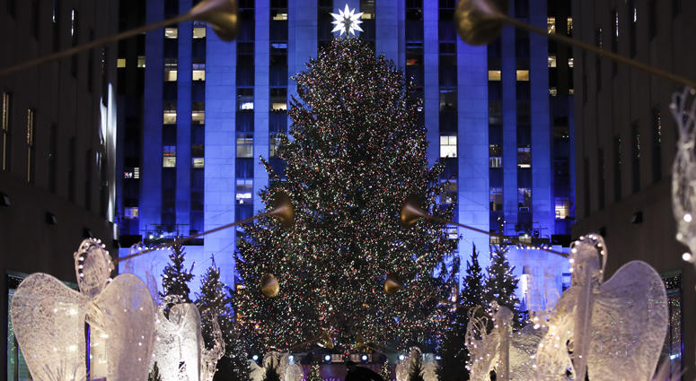 Rockefeller Center Christmas Tree.Norway Spruce From Wallkill Chosen As This Year S