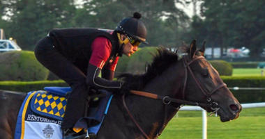 Belmont Stakes Workout