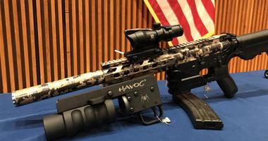 Bronx Gun Arrest