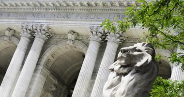 Public Library Lions