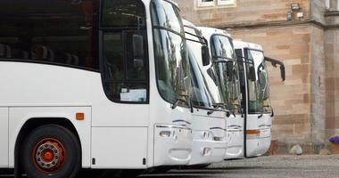 Coach Buses