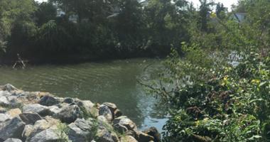Hook Creek in Valley Stream