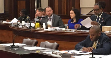 City Council Lead Poisoning Hearing