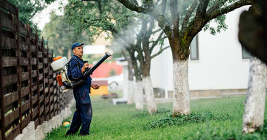 Man spraying toxic pesticides and herbicides in fruit orchard using automatic sprayer