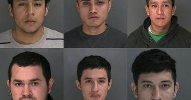 MS-13 Arrest Long Island
