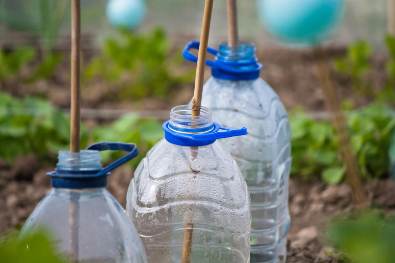 Recycled bottles in a garden