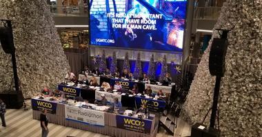 UGM on WCCO