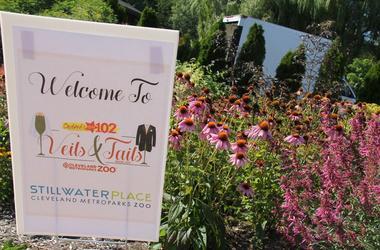 Veils & Tails Bridal Fair at Stillwater Place 2017