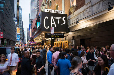 CATS trailer