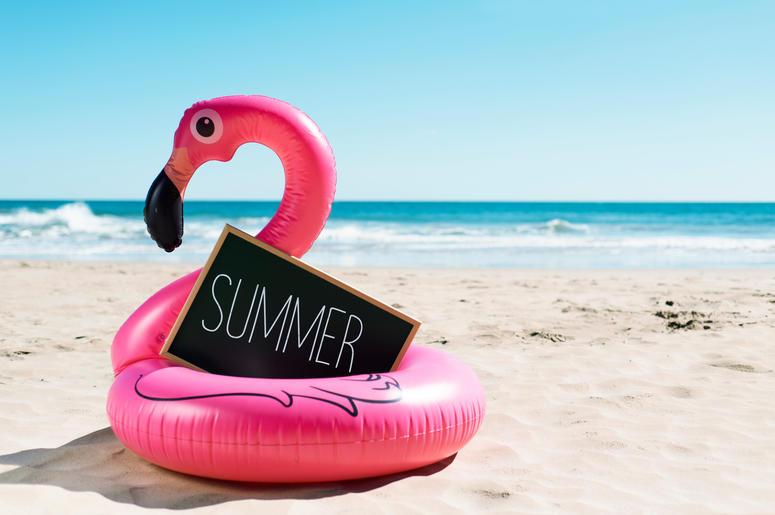 flamingo swim ring