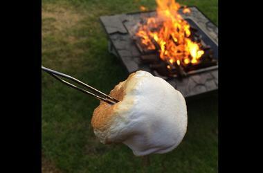 roasted marshmallow