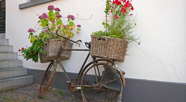 Recycled, reused bicycle as flower box