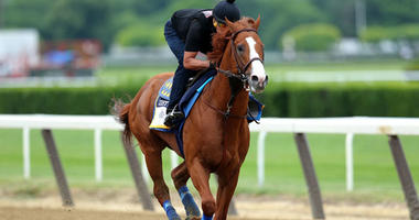 Triple crown contender Justify works out at Belmont Park on June 7, 2018.