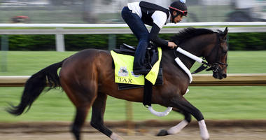 An exercise rider works Kentucky Derby entry Tax during morning workouts on May 2, 2019, at Churchill Downs in Louisville, Kentucky.