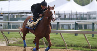 Improbable  participates in a morning workout at Pimlico Race Course on May 16, 2019, in Baltimore.