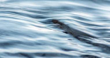 River file image.