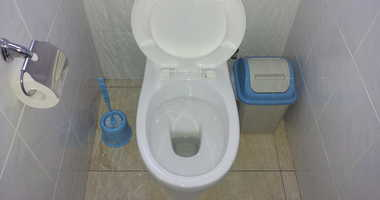 Toilet seat , paper , cleaning brush and trash in nice clean bathroom
