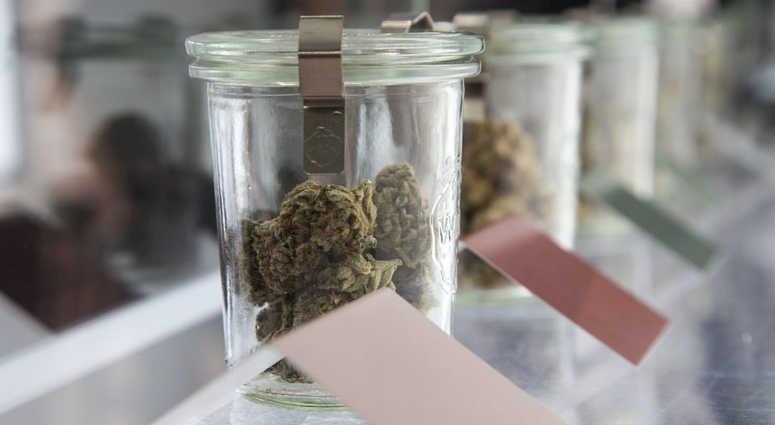 Cannabis Harmony Dispensary