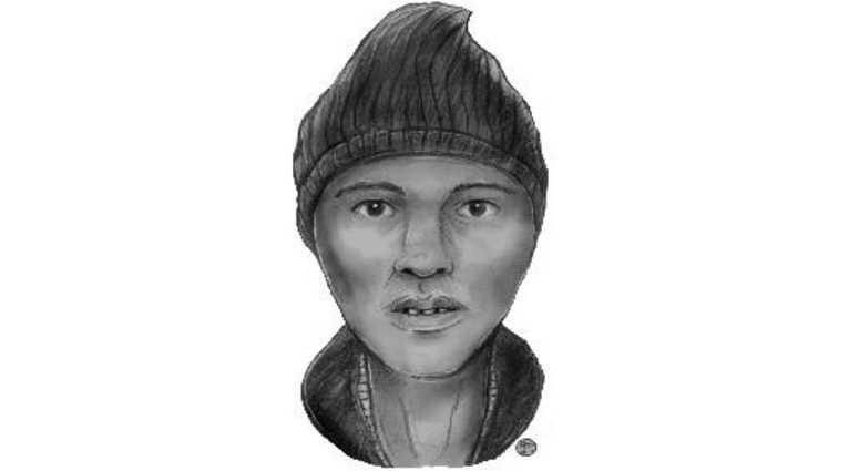 Prospect Lefferts Gardens attempted rape suspect
